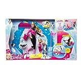 Barbie Antarctica Penguin Fun Playet
