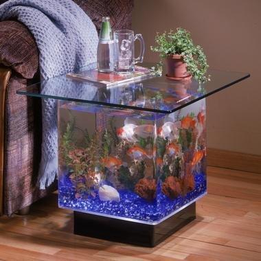 Cheap Midwest Tropical Aqua End Table W Glass Top (B004UMF0UE)