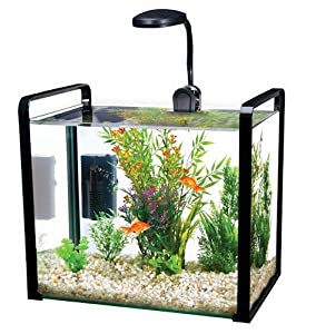 Parallel 4.5 Gallon Designer Glass Aquarium With Led Light And Internal Filter, 4.5 Gallon - Black