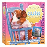 Cute Overload Page-A-Day Calendar 2011by Workman Publishing...