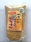 発芽玄米 800g【極献上米使用】【有機米100%】【熊本県産】