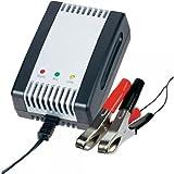 AL 800 Batterie-Ladegerät und Erhaltung 2V 6V 12V Auto Mofa Roller Moped Motorrad
