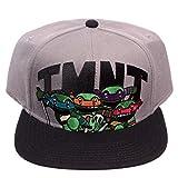 Teenage Mutant Ninja Turtles Anime Snapback