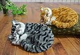 おやすみ親子猫 (ムービングタイプ) 【トラネコ】(寝息音とお腹の中央部分が上下運動)