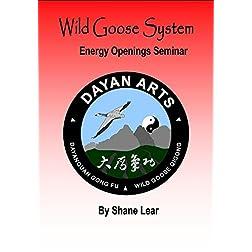 Wild Goose System - Energy Openings Seminar