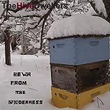 Hewn From The Wilderness [VINYL]