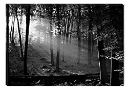Startonight Wall Art Canvas Black and White Morning in the Forest, Nature USA Design for Home Decor, Dual View Surprise Wall Art 23.62 X 35.43 Inch Original Art Painting!