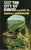 The City of David: A Guide to Biblical Jerusalem (0960709215) by Hershel Shanks
