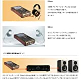 日本正規代理店 COLORFUL  Colorfly POCKET HIFI C4 [32GB]