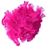 Touch of Nature 38028 Turkey Flats, 14 grams, Hot Pink