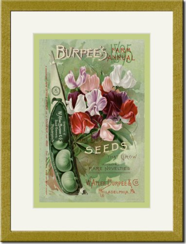 Gold Framed/Matted Print 17x23, Burpee's Farm Annual: The Best Seeds That Grow