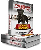 img - for The Complete Guide to Cane Corso - All About Cane Corsi book / textbook / text book