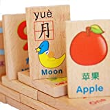 Wooden Domino Block Toys for Kids Learning English and Chinese Vocabulary (100 Pcs)