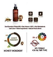 [BENTON] Snail Bee High content Skin Toner 150ml Korean cosmetic Korean beauty brought to you by BENTON