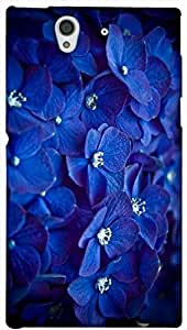 Timpax protective Armor Hard Bumper Back Case Cover. Multicolor printed on 3 Dimensional case with latest & finest graphic design art. Compatible with Sony L36H - Sony 36 Design No : TDZ-25548