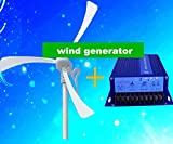 GOWE Max power 500w 12v /24vwind power /small windmill/wind turbine/magnet wind kits +wind controller