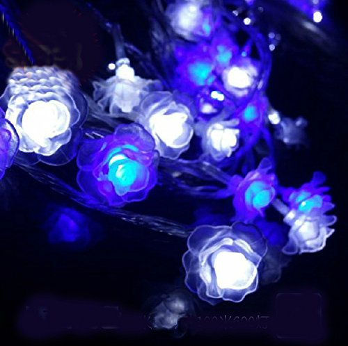 Gorgeouseve 10M(33Ft) 100 Romantic Blue With White Led Lights Rose Shape Warm Feeling String Lights Xmas Decorations For Wedding Holiday And Love With 110V Plug