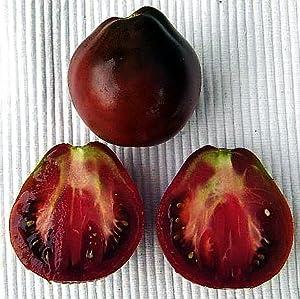 tomato organic japanese black trifele tomato 20 seeds tomato plants patio lawn. Black Bedroom Furniture Sets. Home Design Ideas