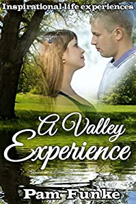 A Valley Experience by Pam Funke ebook deal