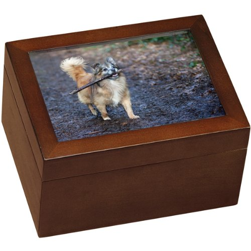 Small Wooden Dog Urn With Photo and Shelf