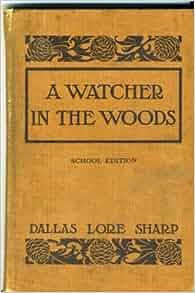 Book watcher in the woods