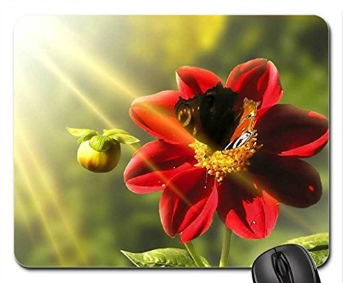 caress-by-the-sun-mouse-pad-mousepad-flowers-mouse-pad