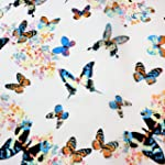 Colourful Butterfly Print Cream Scarf
