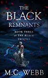 The Black Remnants: book three of The Black Trilogy