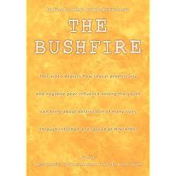The Bushfire