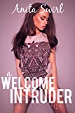 A Welcome Intruder: A BWWM Erotic Romance (The Naughty Stranger Files: Home Invasion Book 1)