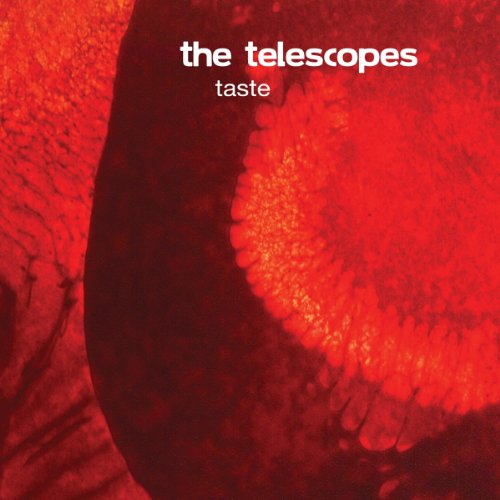 The Telescopes Taste