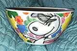 Peanuts Snoopy Festive Sketch Collection Bowl Flowers