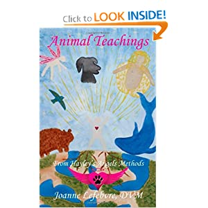 Animal Teachings: From Hayley's Angels Methods Joanne Lefebvre