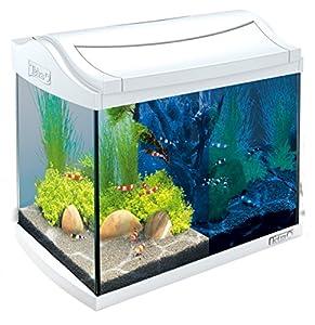 Achat aquarium juwel lido 200 for Achat aquarium complet