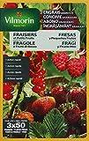 Vilmorin 6410799 Engrais Granules Fraisiers et Petits Fruits Etui de 800 g 4 LG