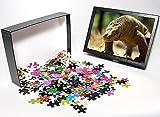 Photo Jigsaw Puzzle of KOMODO DRAGON - s...