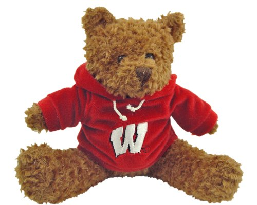 Champion Treasures NCAA Wisconsin Badgers Hoodie Bear