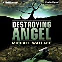 Destroying Angel: Righteous Series, Book 5 Audiobook by Michael Wallace Narrated by Arielle DeLisle