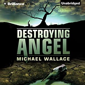 Destroying Angel: Righteous Series, Book 5 | [Michael Wallace]