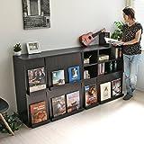 送料無料 ディスプレイラック 2個組 木製 フラップチェスト リビング収納 魅せる収納 本棚 書棚 扉付オープンラック 2個セット ブラウン CPB025-C-BR