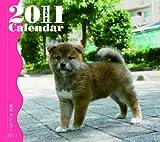 柴犬カレンダー 2011