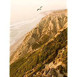 Flight from Torrey Pines Glider Port with a DJI Phantom 3 Professional [OV]