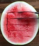 #1 Rated Watermelon Slicer - No Mess, No Stress, Neat & Easy With Juicy Slices of Melon and Many Other Fruits - Stainless Steel Corer Knife and Melon Cutter