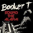 Sound The Alarm [VINYL]
