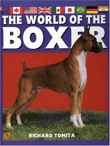 World Of The Boxer: Akc Rank 13
