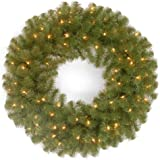 National Tree NRV7-300-24W-1 North Valley Spruce Wreath with 50 Clear Lights, 24-Inch