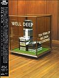 WELL DEEP ~10 YEARS OF BIG DADA RECORDINGS~[解説/日本語字幕付/国内盤] [DVD]
