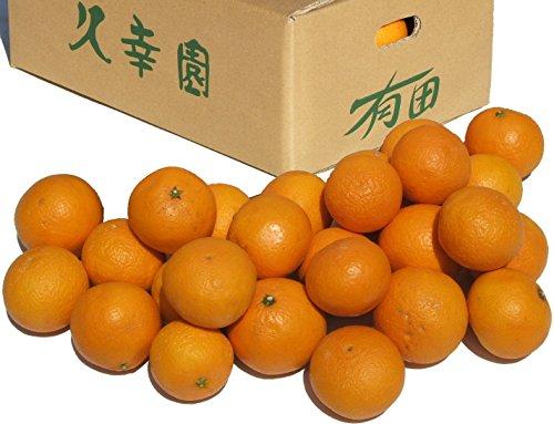 久幸園 完熟清見オレンジ♪ 農家直送!【3kg】 【和歌山県有田産】 (M・S・2Sサイズ混合)