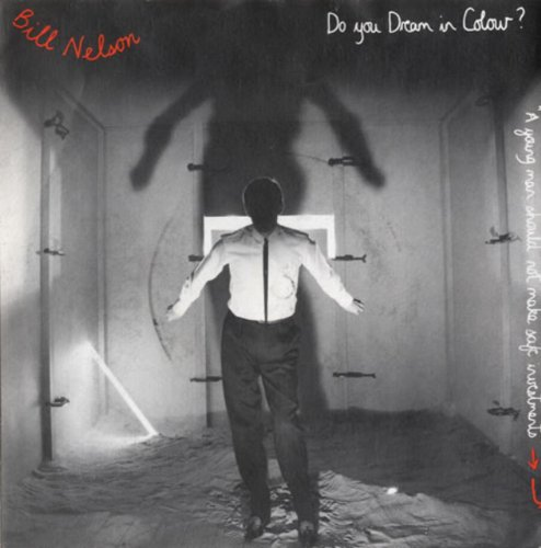 Original album cover of Do You Dream In Colour? by Bill Nelson