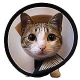 JapaNice (ジャパナイス) 犬 猫 エリザベス カラー ソフト タイプ (6号 :首回り実寸 16.0 ? 19.5 cm) BC511
